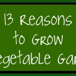 13 Reasons to Grow a Vegetable Garden.