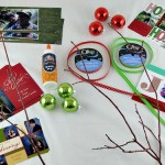 DIY: Branch Display for Holiday Photo Cards