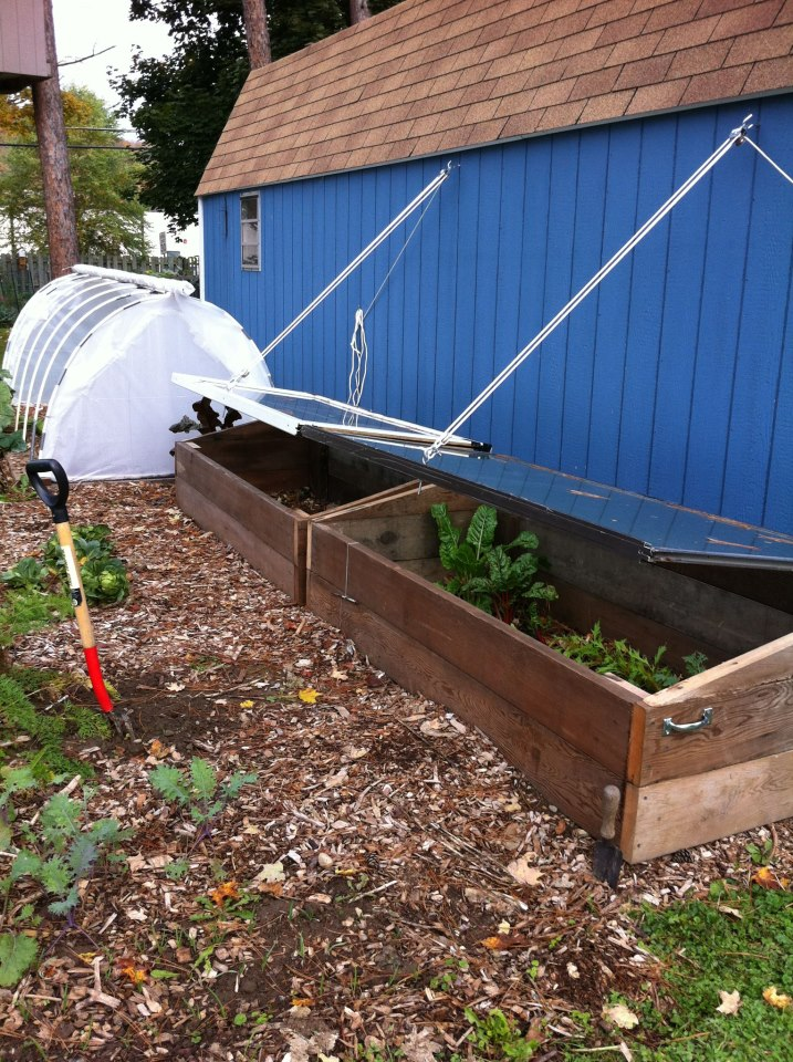 Using Cold Frames in a Northern Winter - Update - Frugal Upstate