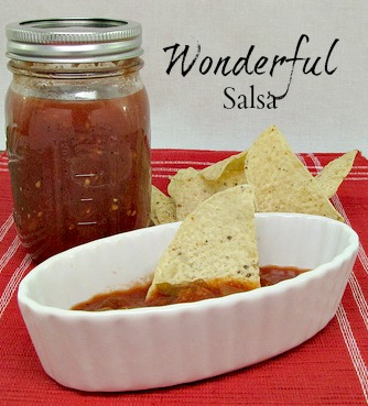 Wonderful Salsa Recipe