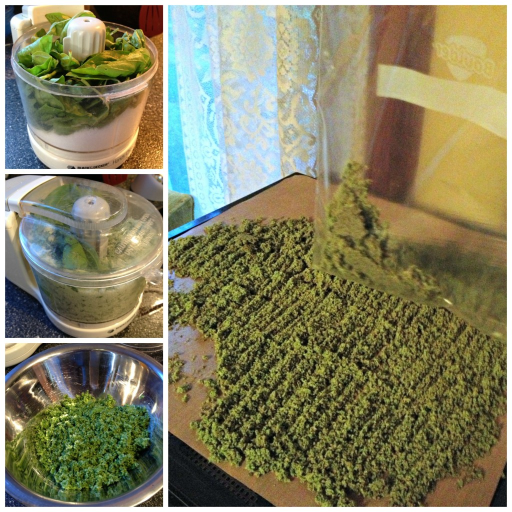 Making Basil Salt