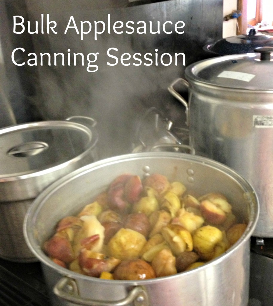 Bulk Applesauce Canning Session