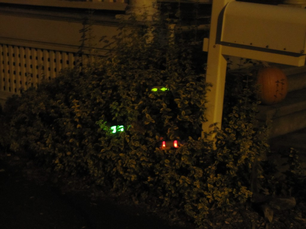 Halloween Eyes in the Bushes