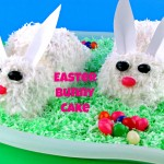 Make an Easter Bunny Cake - It's easy!