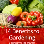 14 Benefits of Gardening — A Prioritized Life Podcast