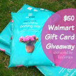 $50 Walmart Giftcard Giveaway — Sponsored by EcoScraps!