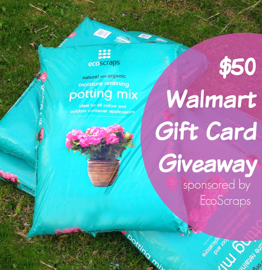 $50 Walmart Giftcard Giveaway -- enter from 5-13 to 5-20