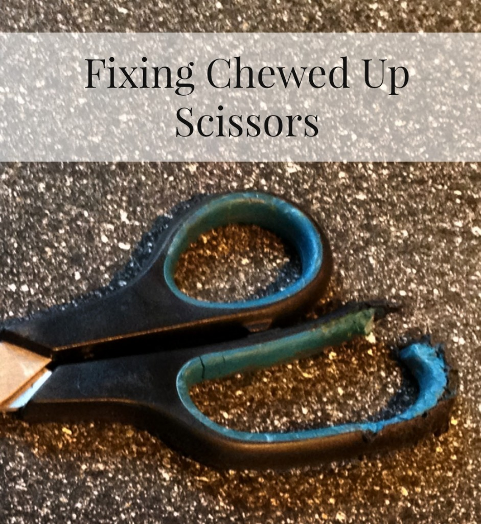 Fixing Chewed Up Scissors