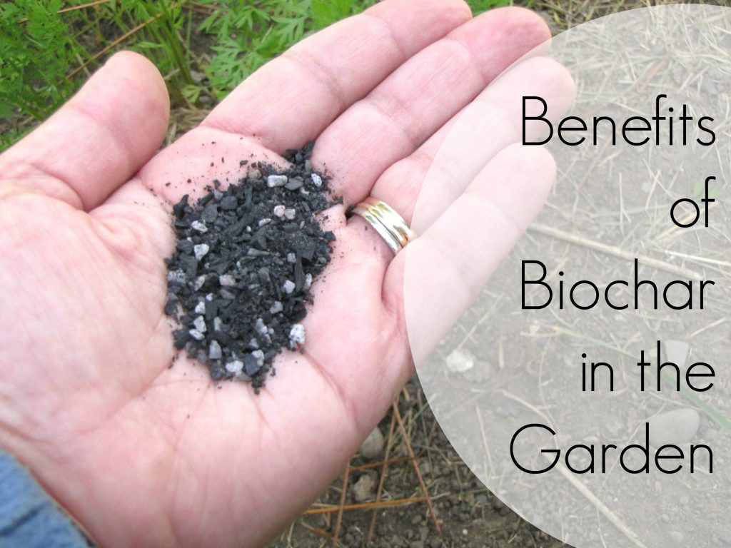 benefits-of-biochar-in-the-garden