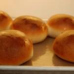 Homemade Hambuger Rolls